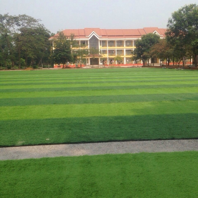 AFD cung cap co nhan tao va cai tao nang cap san van dong truong Cd Su Pham Thai Nguyen _9mrLk → Công ty AFD grass