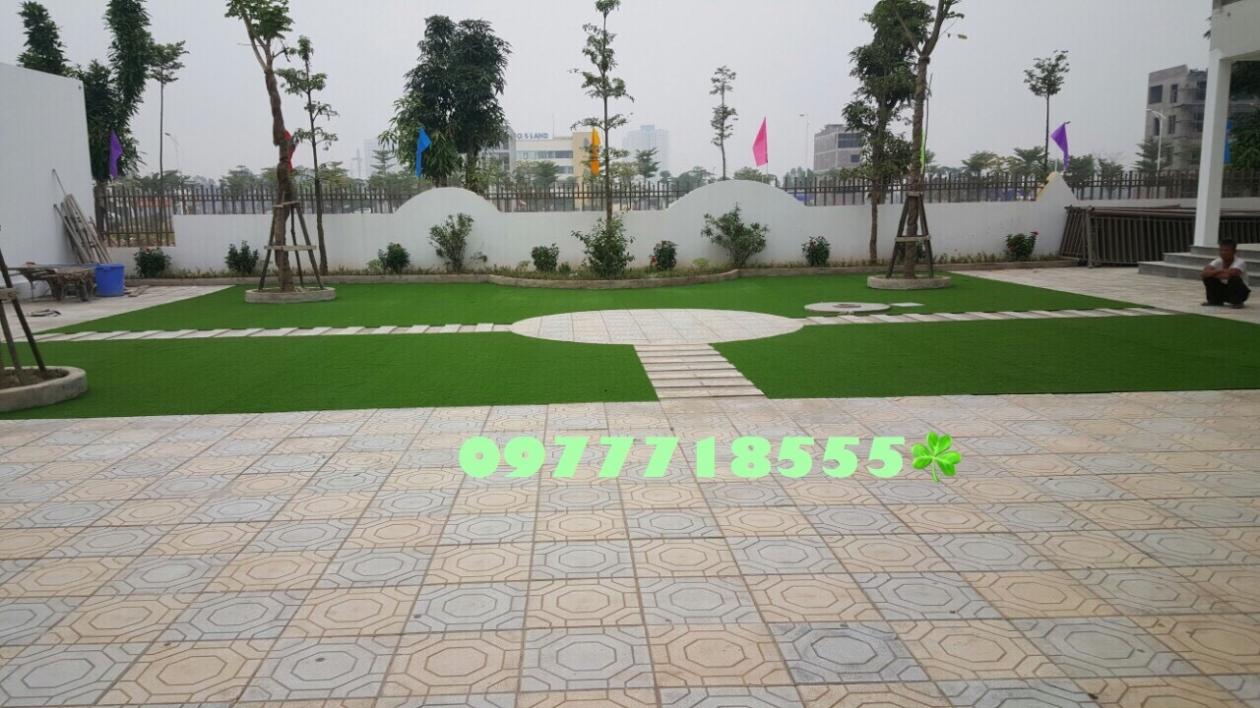 AFD Grass - Cung cap lap dat co nhan tao truong mam non Trang An, Kien Hung, Ha dong, Ha Noi  _DJcZ7 → Công ty AFD grass