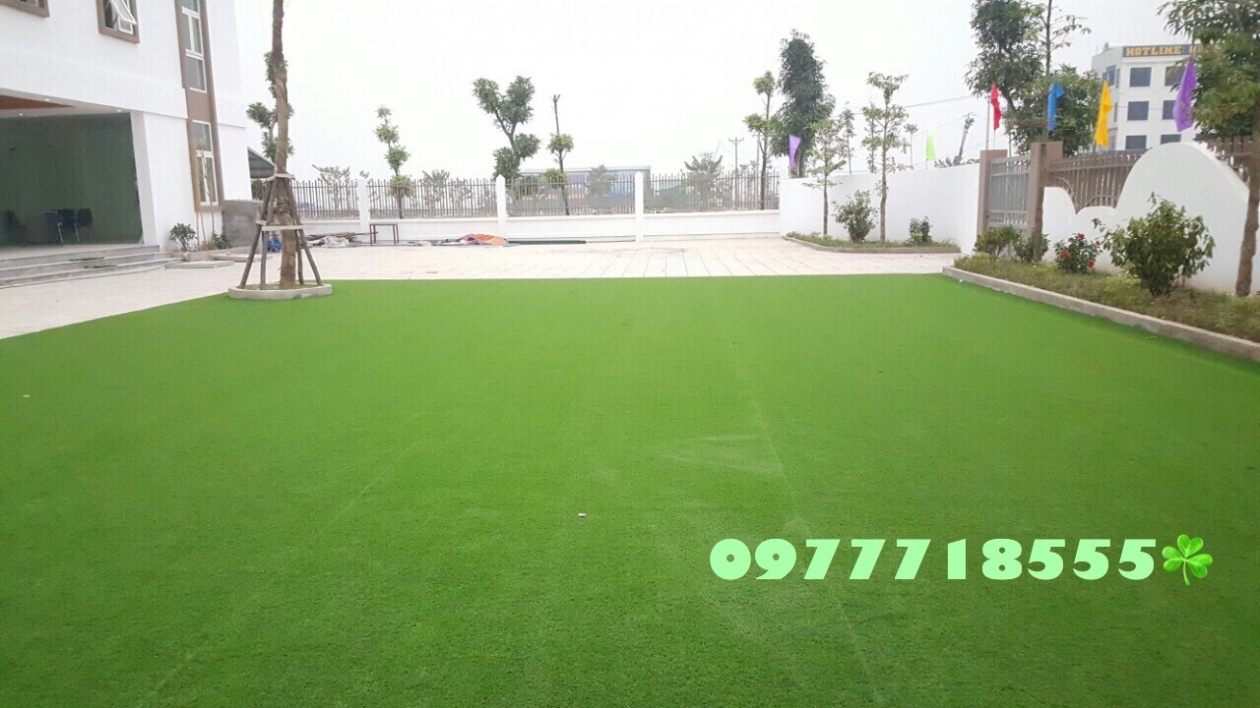 AFD Grass - Cung cap lap dat co nhan tao truong mam non Trang An, Kien Hung, Ha dong, Ha Noi  _qxAQ9 → Công ty AFD grass