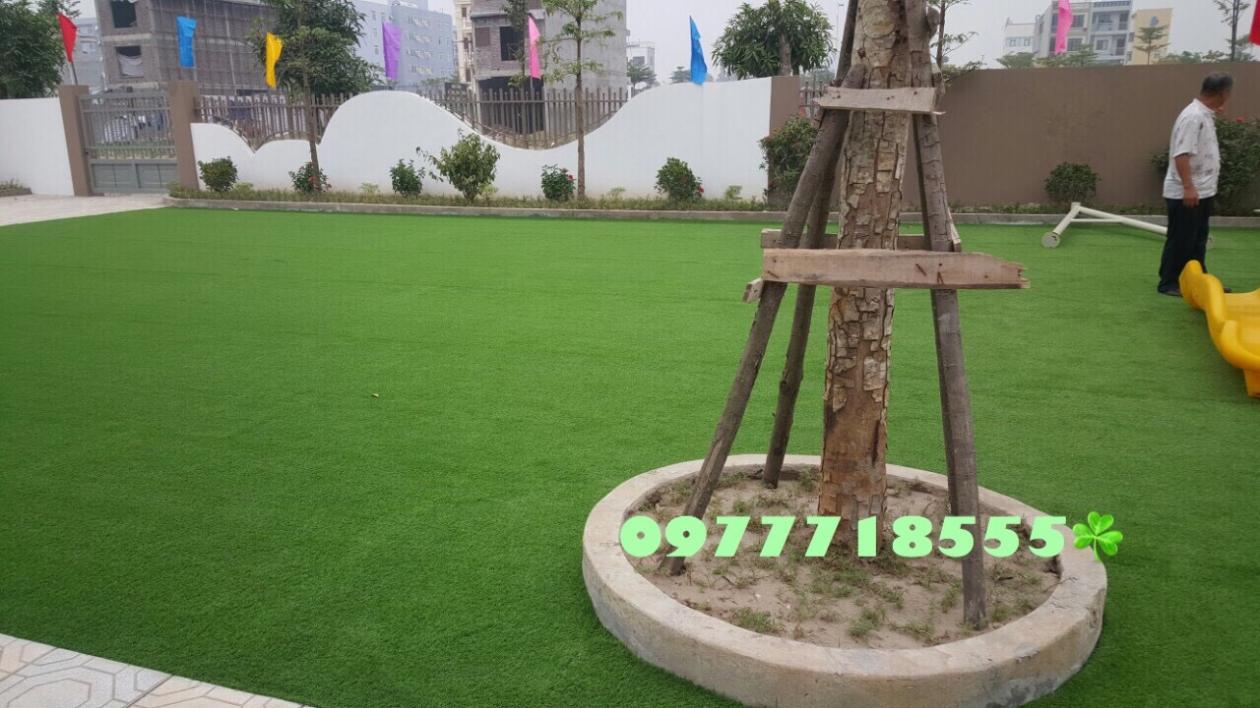 AFD Grass - Cung cap lap dat co nhan tao truong mam non Trang An, Kien Hung, Ha dong, Ha Noi  _nUwsX → Công ty AFD grass