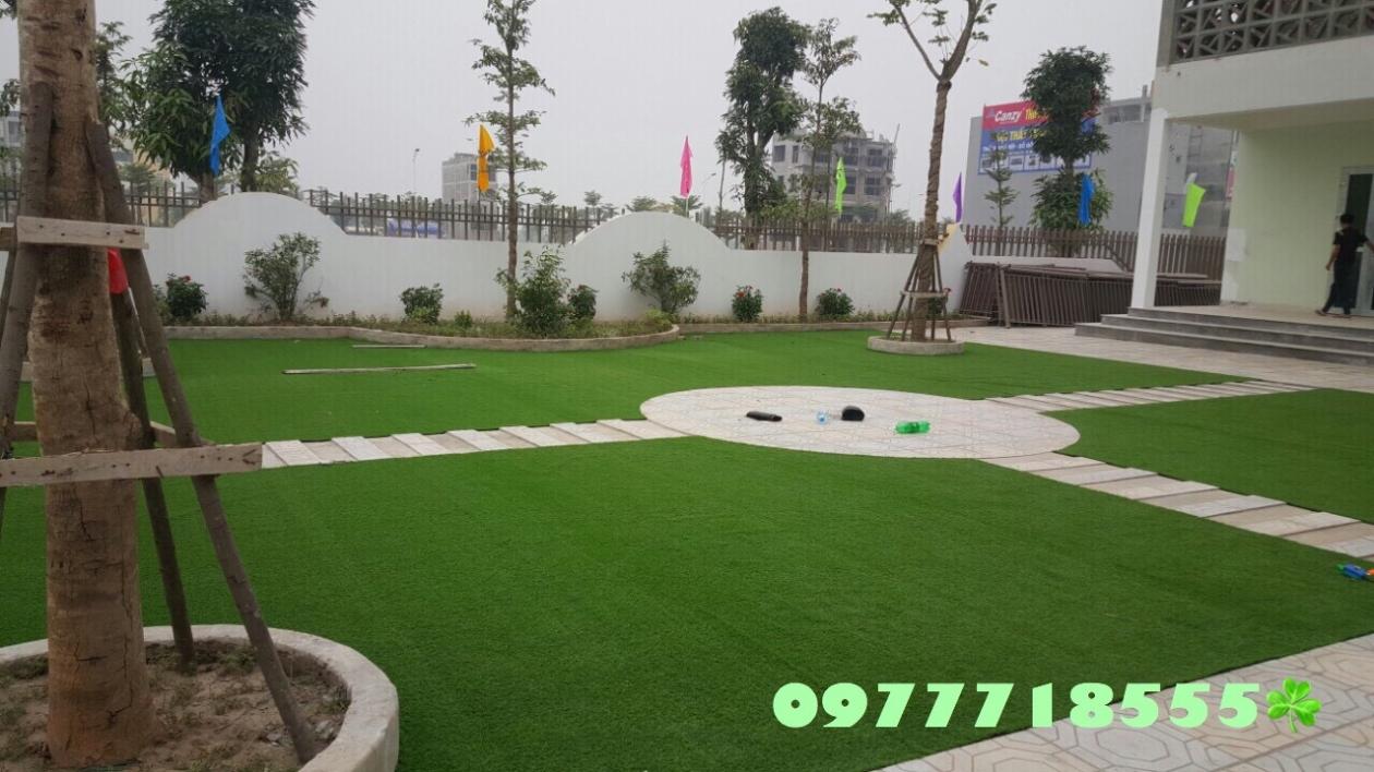 AFD Grass - Cung cap lap dat co nhan tao truong mam non Trang An, Kien Hung, Ha dong, Ha Noi  _68i36 → Công ty AFD grass