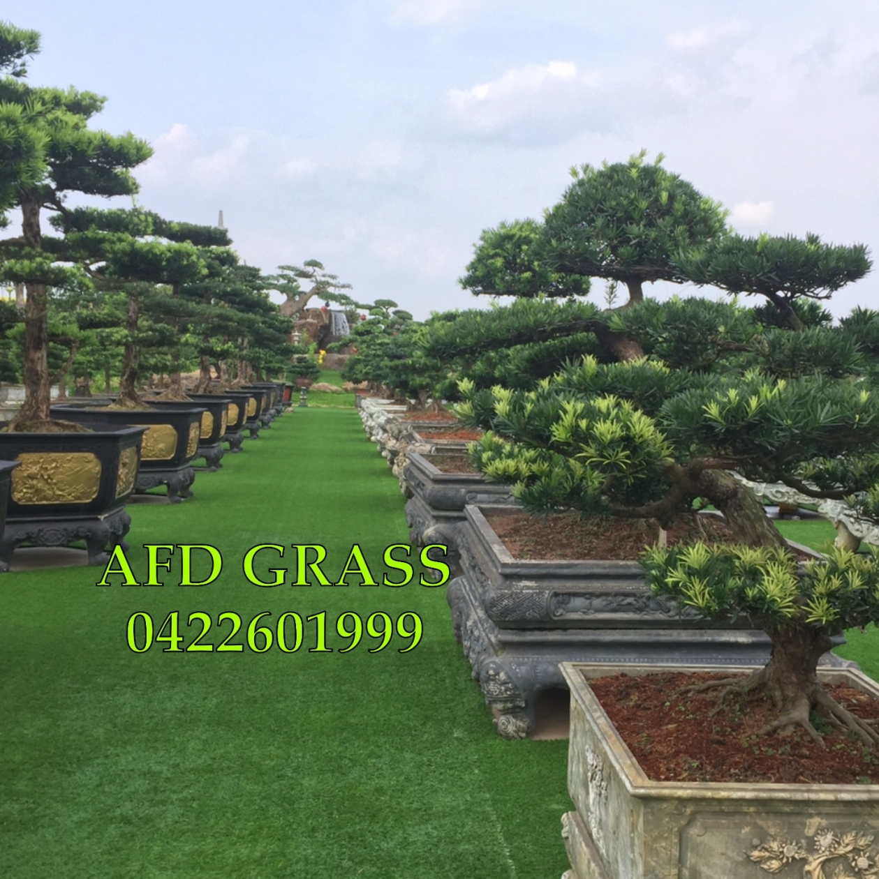CoNG TRiNH SoNG CoNG THaI NGUYeN _uWm32 → Công ty AFD grass