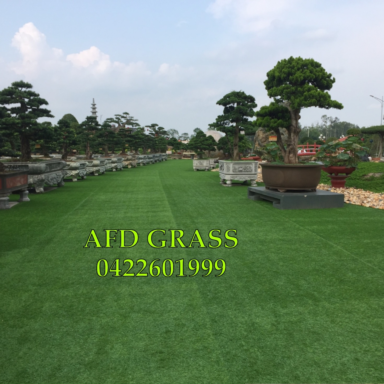 CoNG TRiNH SoNG CoNG THaI NGUYeN _ygAx1 → Công ty AFD grass