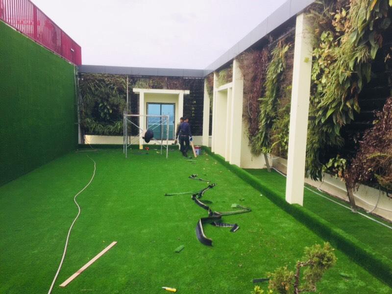 Co nhan tao chung cu Cat Tuong _saJJR → Công ty AFD grass