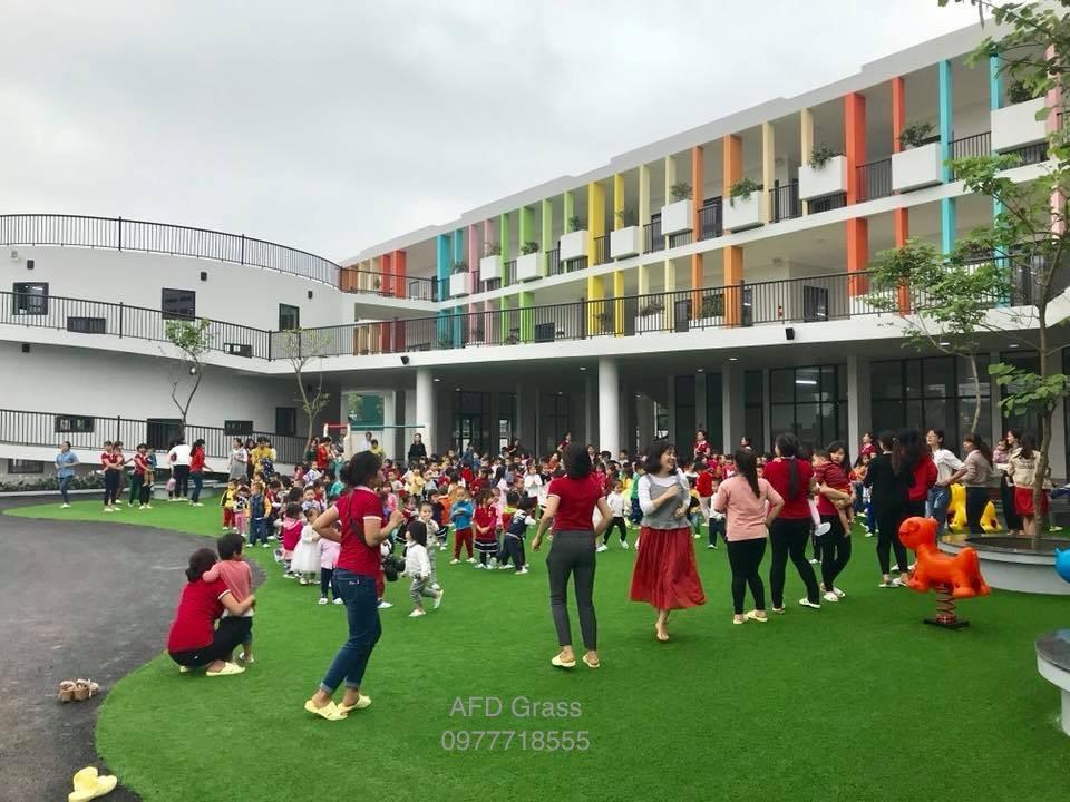 Truong mam non Soc Nau - Tp Viet Tri  _cJio3 → Công ty AFD grass