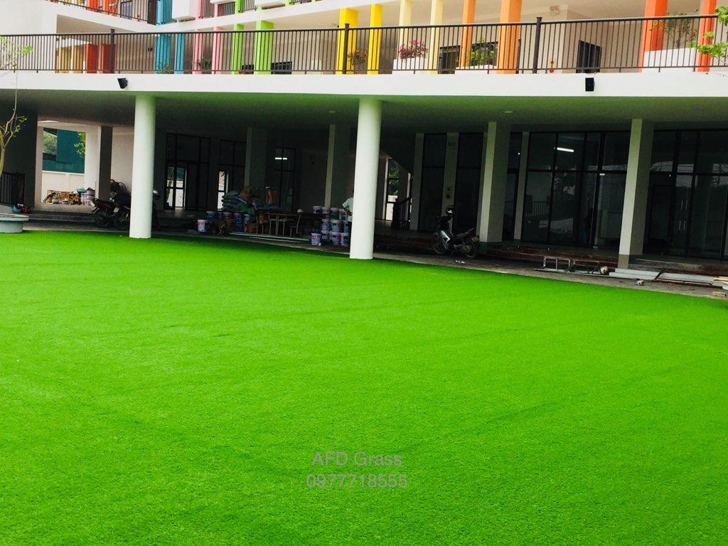 Truong mam non Soc Nau - Tp Viet Tri  _qAJDq → Công ty AFD grass