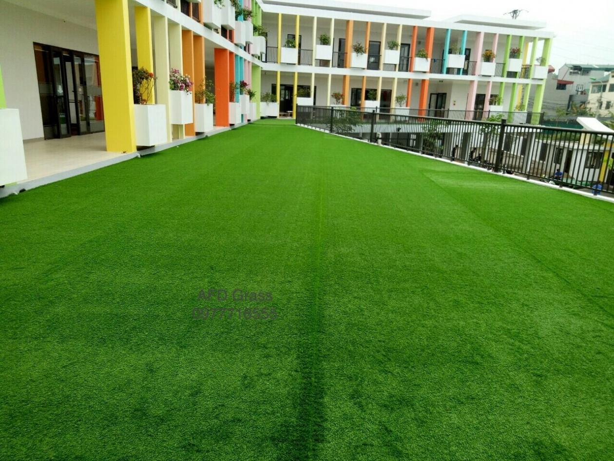 Truong mam non Soc Nau - Tp Viet Tri  _Vktrg → Công ty AFD grass