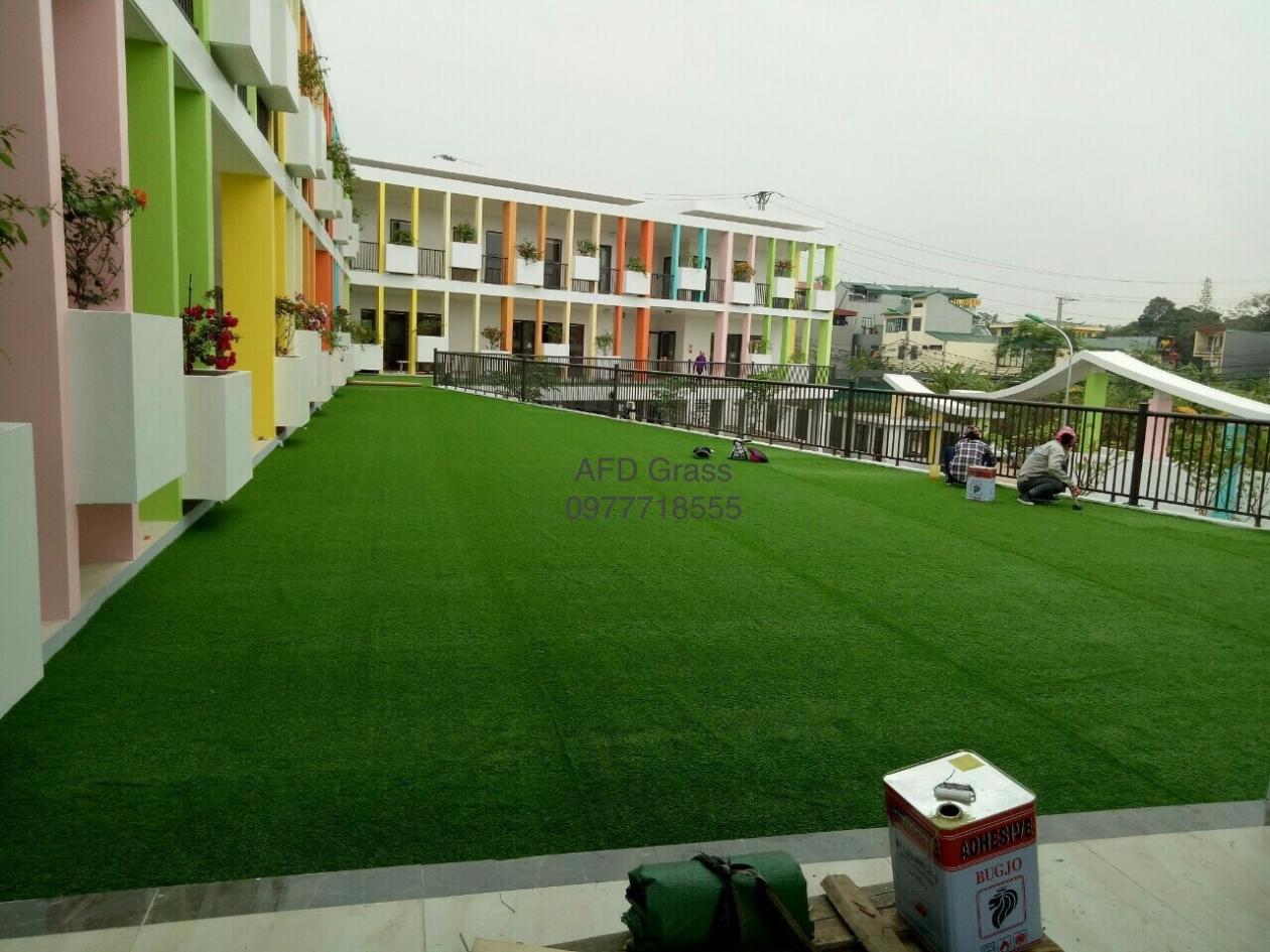 Truong mam non Soc Nau - Tp Viet Tri  _mzhHC → Công ty AFD grass