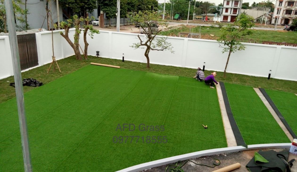Truong mam non Soc Nau - Tp Viet Tri  _s6CrN → Công ty AFD grass
