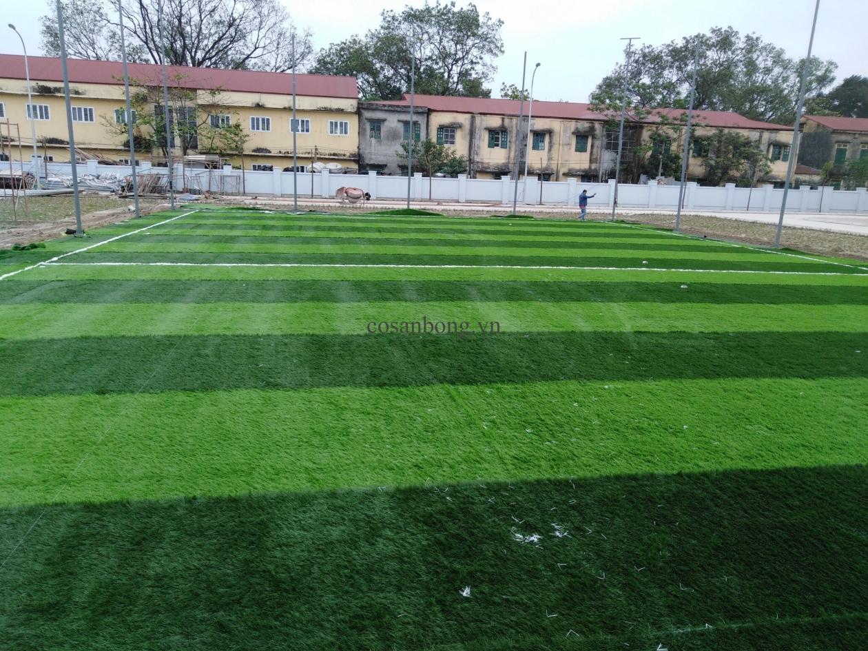 SaN BoNG TRuoNG THCS DuC Tu, doNG ANH _OoATu → Công ty AFD grass