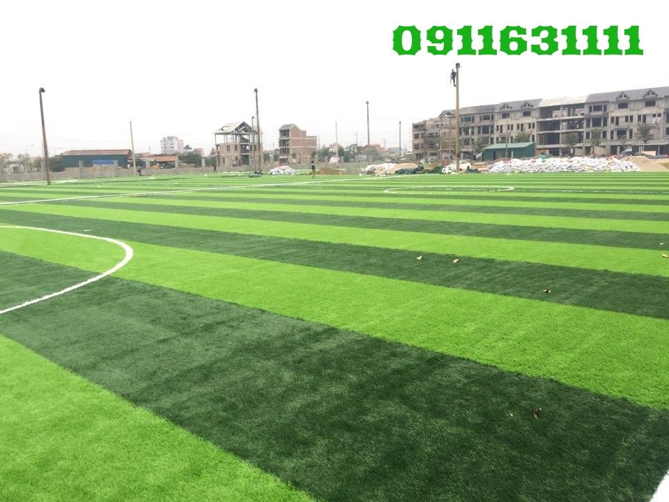 Cung cap tham co san bong Geleximco Ha Tay _MMS8y → Công ty AFD grass