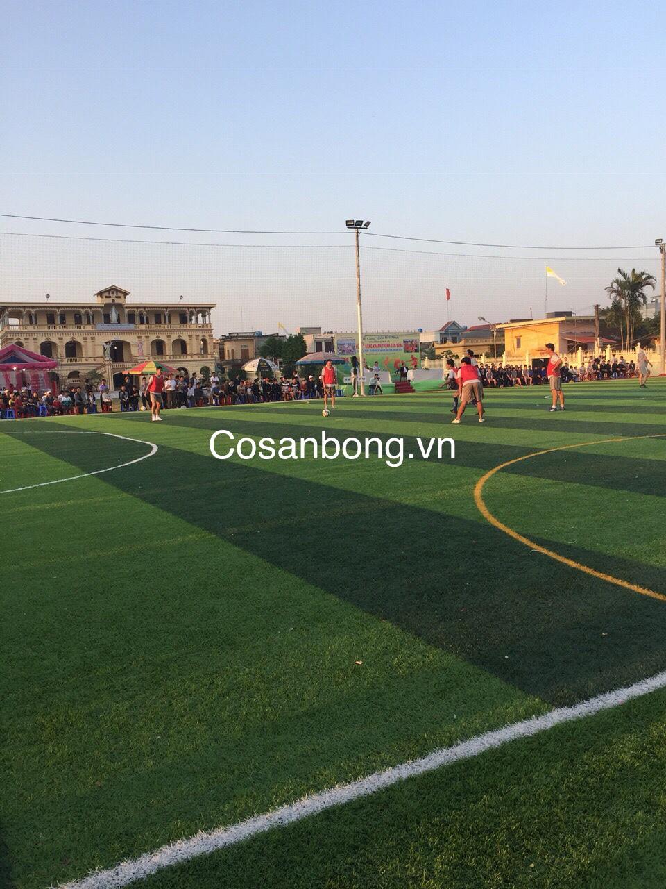 San Bong Giao Xu dong Phu Thai Binh _7DkvX → Công ty AFD grass