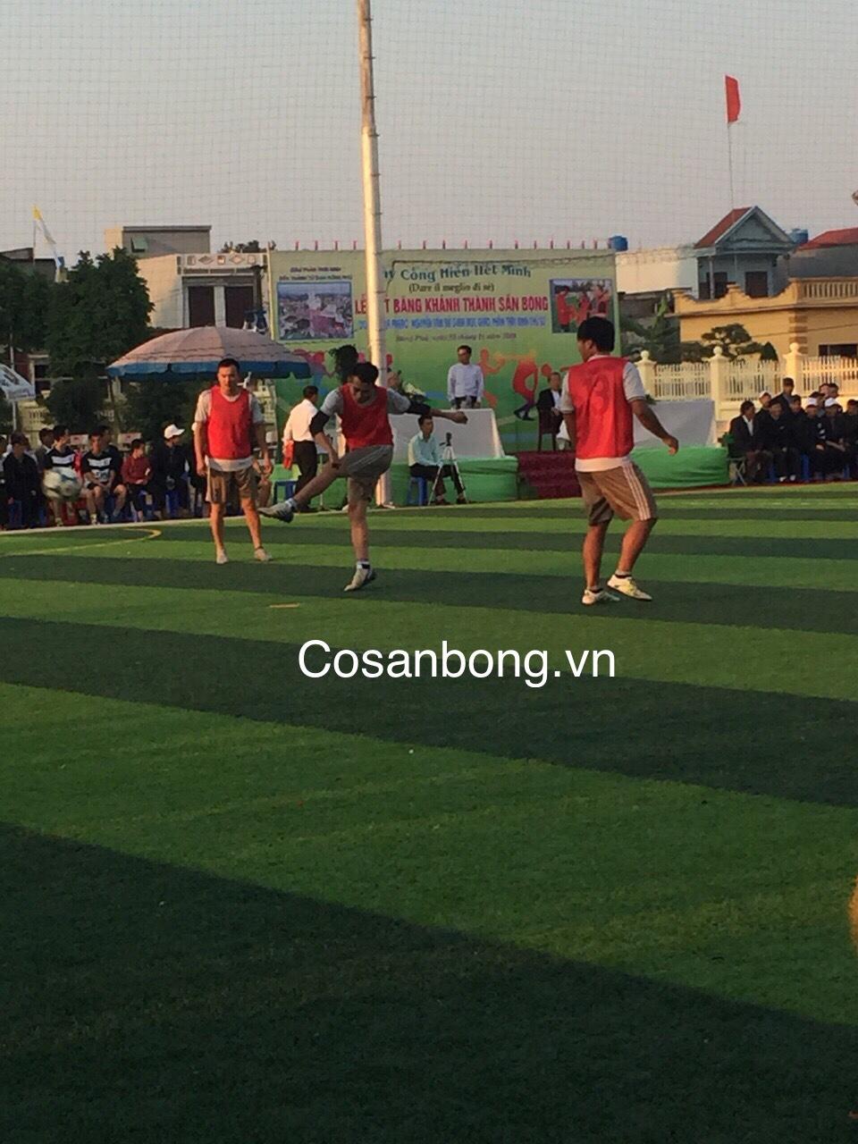San Bong Giao Xu dong Phu Thai Binh _4GmzG → Công ty AFD grass